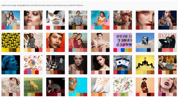 Adobe Colour Trends Image