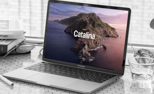 Catalina doesn't support Adobe InDesign CS6 on macOS laptop
